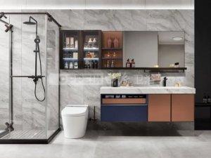 欧派衣柜 维克托系列浴室柜